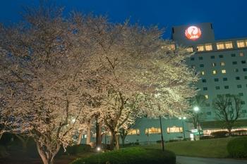 ホテル日航成田 sakura画像 009.jpg