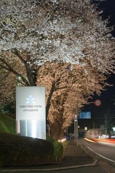 ホテル日航成田 sakura画像 017.jpg