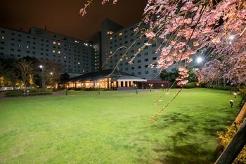 ホテル日航成田 sakura画像 025.jpg