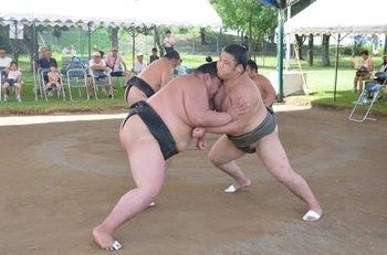 相撲合宿 (4).jpg